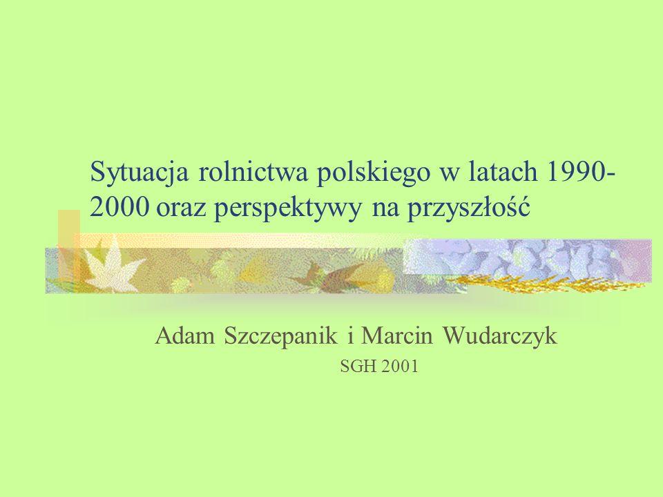 Struktura prezentacji Wstęp Sytuacja rolnictwa w latach 90-tych Perspektywy Podsumowanie