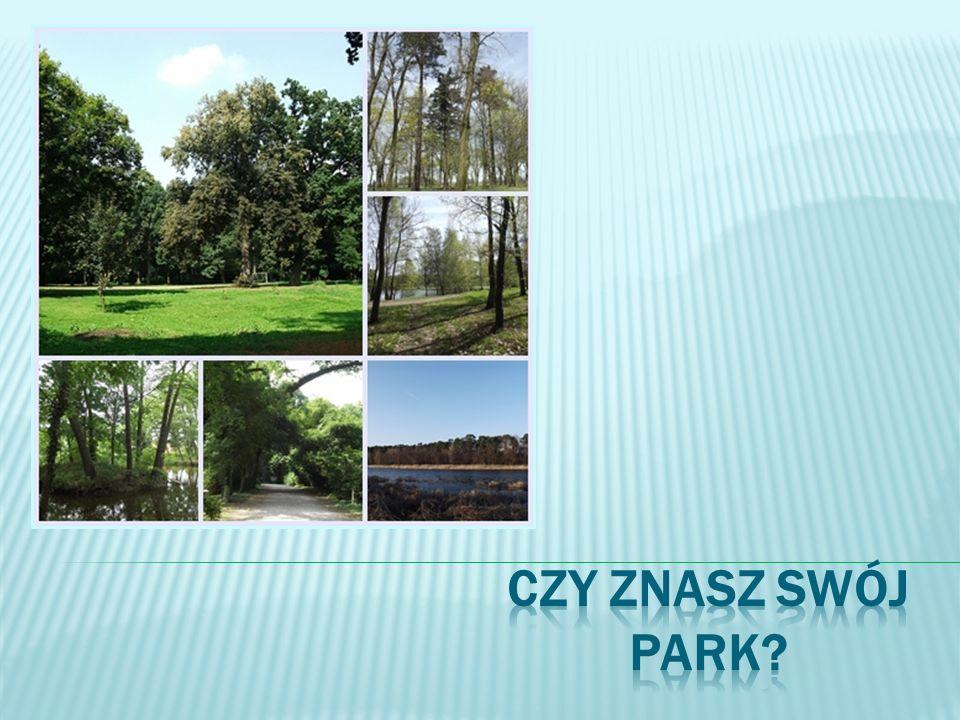 powierzchnia parku: 19,20 ha, w tym O,7 ha wód na terenie parku znajduje się pałac z XVII w., w którym obecnie mieści się szkoła park na dwie części dzieli droga krajowa nr 5 w parku zagospodarowany jest plac zabaw, 3 boiska, bieżnia najokazalsze drzewo w parku to platan, a ponadto rosną tu m.in.