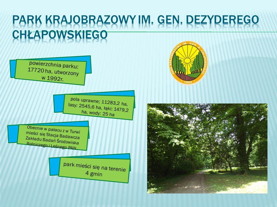 pola uprawne; 11283,2 ha, lasy: 2545,6 ha, łąki: 1479,2 ha, wody: 25 ha park mieści się na terenie 4 gmin Obecnie w pałacu z w Turwi mieści się Stacja