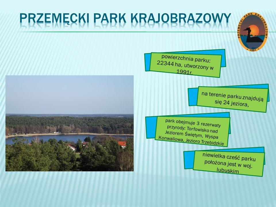 powierzchnia parku: 22344 ha, utworzony w 1991r. na terenie parku znajdują się 24 jeziora, niewielka cześć parku położona jest w woj. lubuskim park ob