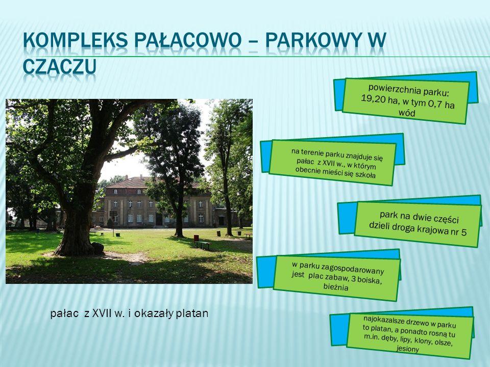 powierzchnia parku: 19,20 ha, w tym O,7 ha wód na terenie parku znajduje się pałac z XVII w., w którym obecnie mieści się szkoła park na dwie części d