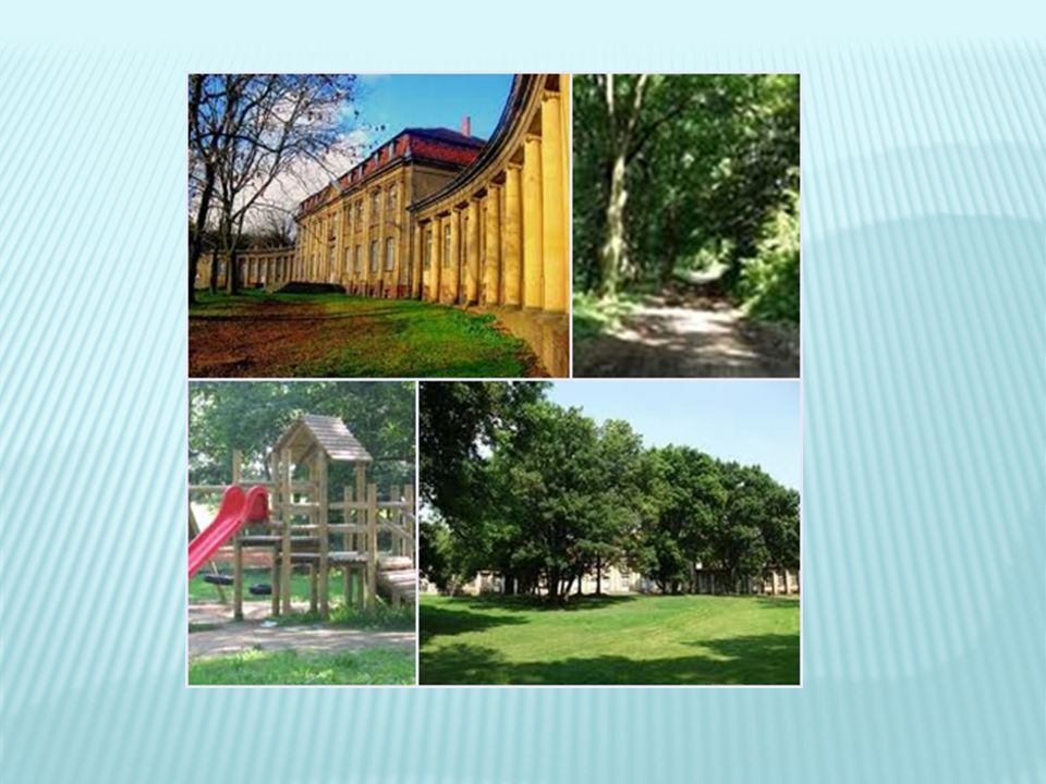 atrakcją parku są dwa wiatraki koźlaki i obiekty rekreacyjno- sportowe m.in.