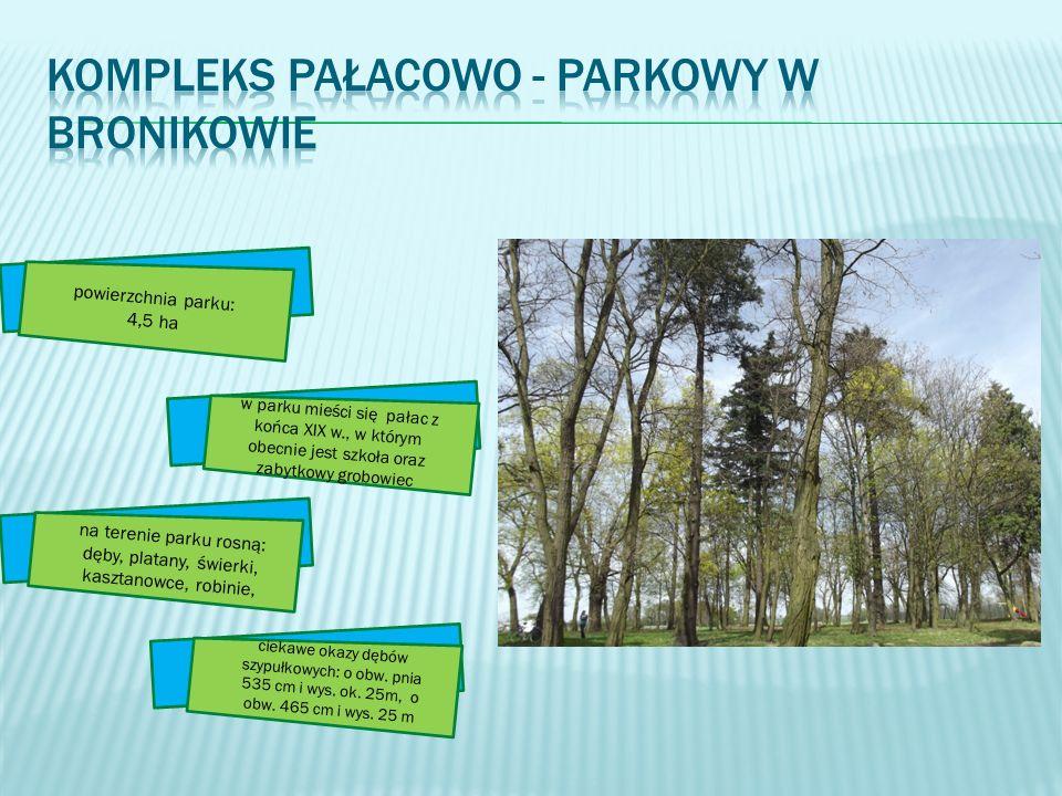 powierzchnia parku: 4,5 ha w parku mieści się pałac z końca XIX w., w którym obecnie jest szkoła oraz zabytkowy grobowiec na terenie parku rosną: dęby