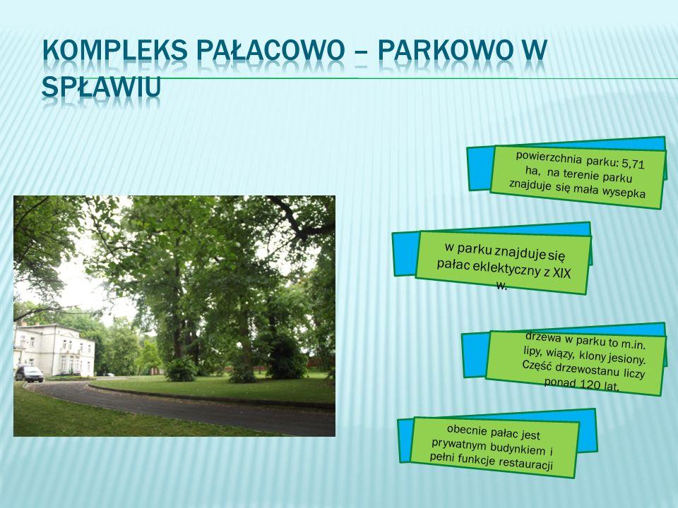 powierzchnia parku: 5,71 ha, na terenie parku znajduje się mała wysepka w parku znajduje się pałac eklektyczny z XIX w. drzewa w parku to m.in. lipy,