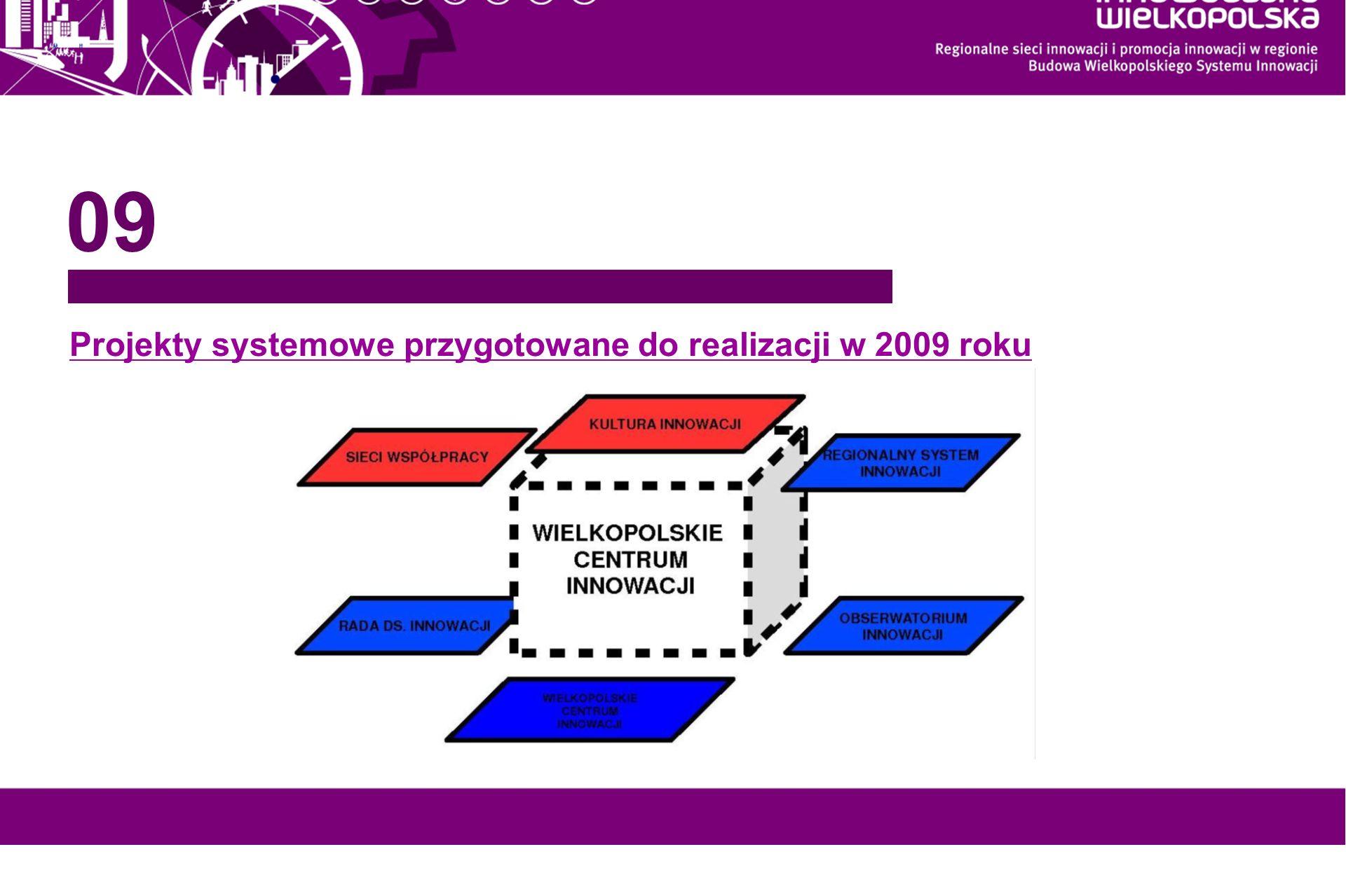 www.innowacyjna-wielkopolska.pl Projekty systemowe przygotowane do realizacji w 2009 roku 09