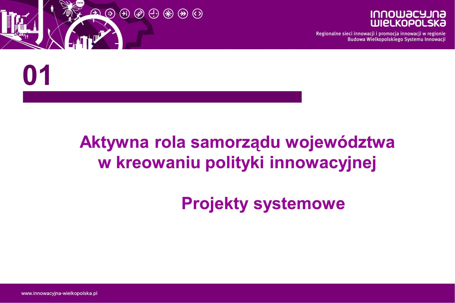 www.innowacyjna-wielkopolska.pl Działania planowane do realizacji w ramach projektów systemowych w 2009 roku 12 Sieci Współpracy Wiedza - badania sieci, badania potencjału branż, spotkania Współpraca - platforma wymiany doświadczeń Usługi - design, turystyka (analizy, spotkania, promocja, wizyty studyjne