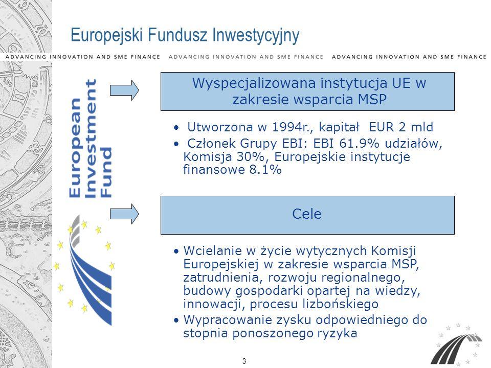 3 Europejski Fundusz Inwestycyjny Wcielanie w życie wytycznych Komisji Europejskiej w zakresie wsparcia MSP, zatrudnienia, rozwoju regionalnego, budow
