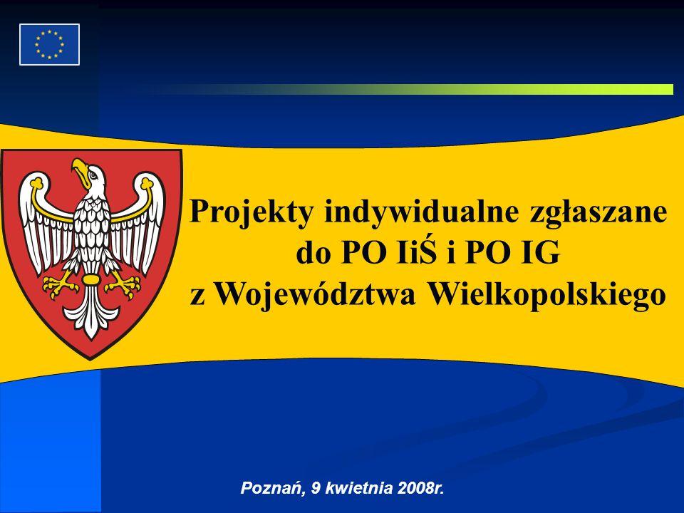 Autor: G.Potrzebowski Projekty indywidualne zgłaszane do PO IiŚ i PO IG z Województwa Wielkopolskiego Poznań, 9 kwietnia 2008r.