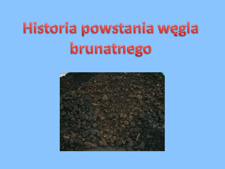 Węgiel brunatny powstał w erze kenozoicznej, a ściślej mówiąc w trzeciorzędzie.