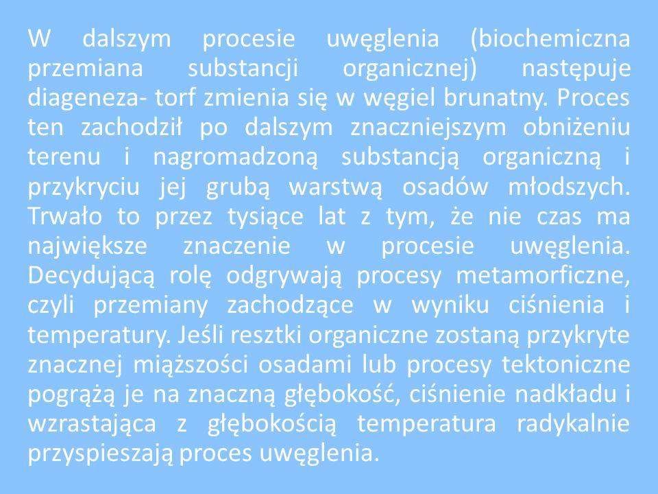 Gdzie w Polsce wydobywa się węgiel brunatny.