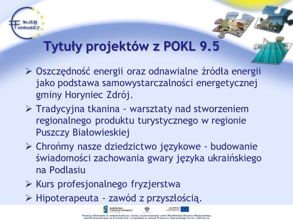 Oszczędność energii oraz odnawialne źródła energii jako podstawa samowystarczalności energetycznej gminy Horyniec Zdrój. Tradycyjna tkanina - warsztat