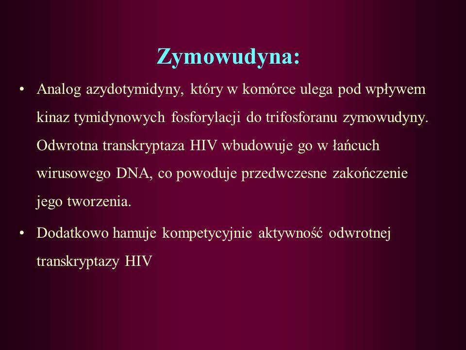 Idoksurydyna: Metabolit tymidyny, w którym grupa metylowa została zastąpiona jodem, przez co uniemożliwione zostaje wbudowanie cząstki tymidyny do DNA