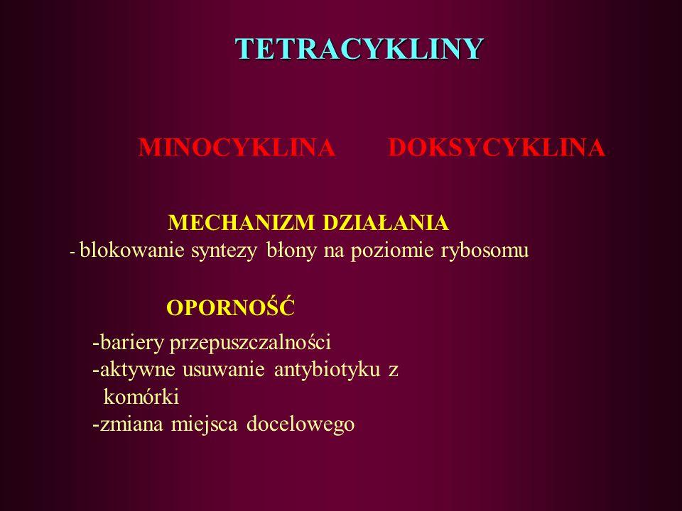 56 Aminoglikozydy – działania niepożądane Ototoksyczność Nefrotoksyczność Hipomagnezemia (długie stosowanie) Blokada przewodnictwa nerwowo- mięśnioweg