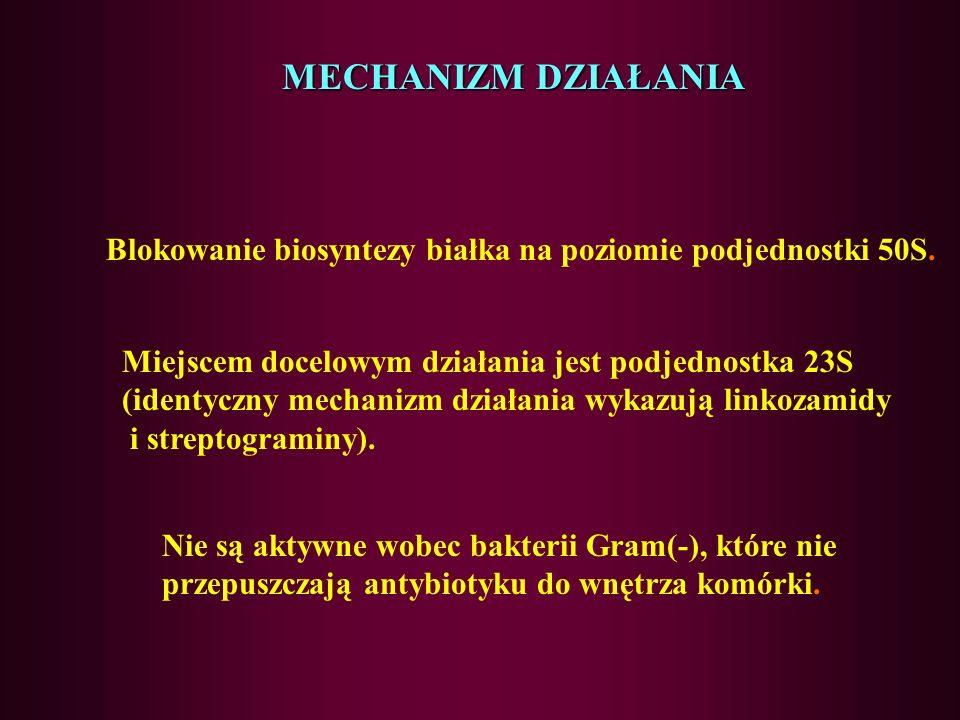 Makrolidy c.d. W terapii niektórych zakażeń (głównie dróg oddechowych) są stosowane alternatywnie do antybiotyków β-laktamowych (penicylin i cefalospo