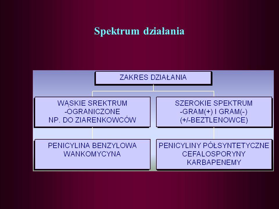 Spektrum działania przeciwbakteryjnego cefalosporyn I GENERACJA - ziarenkowce Gram(+) (z wyjątkiem Enterococcus oraz SPPR) - Staphylococcus ( z wyjątkiem MRSA i MRCNS) - pałeczki Gram(-) - Escherichia coli, Klebsiella pneumoniae II GENERACJA - ziarenkowce Gram(+) i(-) - Streptococcus, Staphylococcus, Neisseria, Moraxella - pałeczki Gram(-) - H.influenze, E.coli III GENERACJA - ziarenkowce Gram (+) - pałeczki Gram(-)