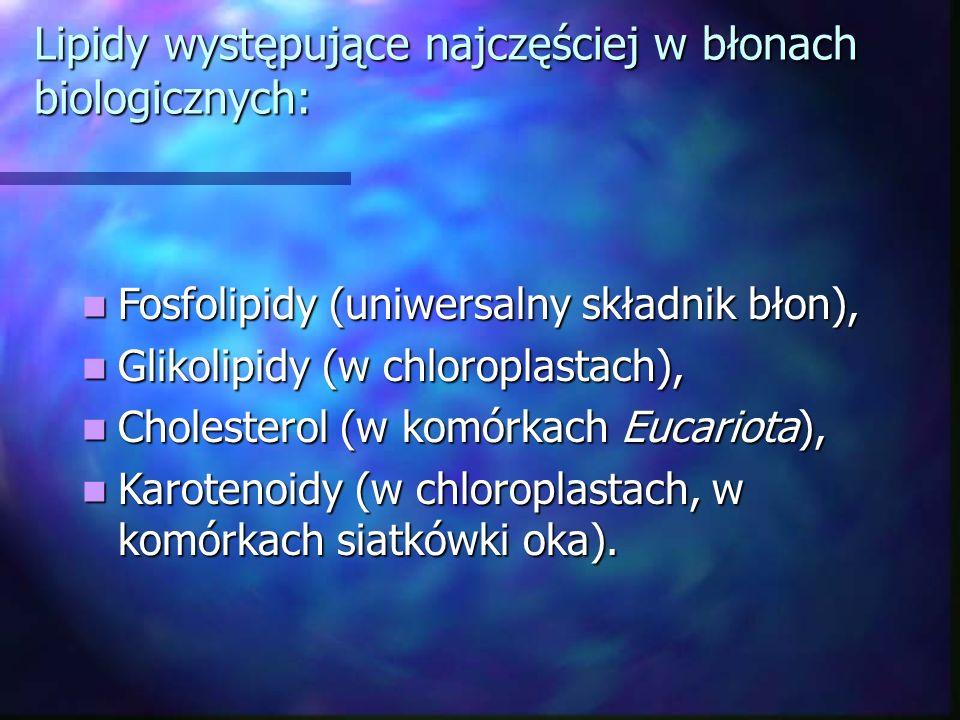 Lipidy występujące najczęściej w błonach biologicznych: Fosfolipidy (uniwersalny składnik błon), Fosfolipidy (uniwersalny składnik błon), Glikolipidy
