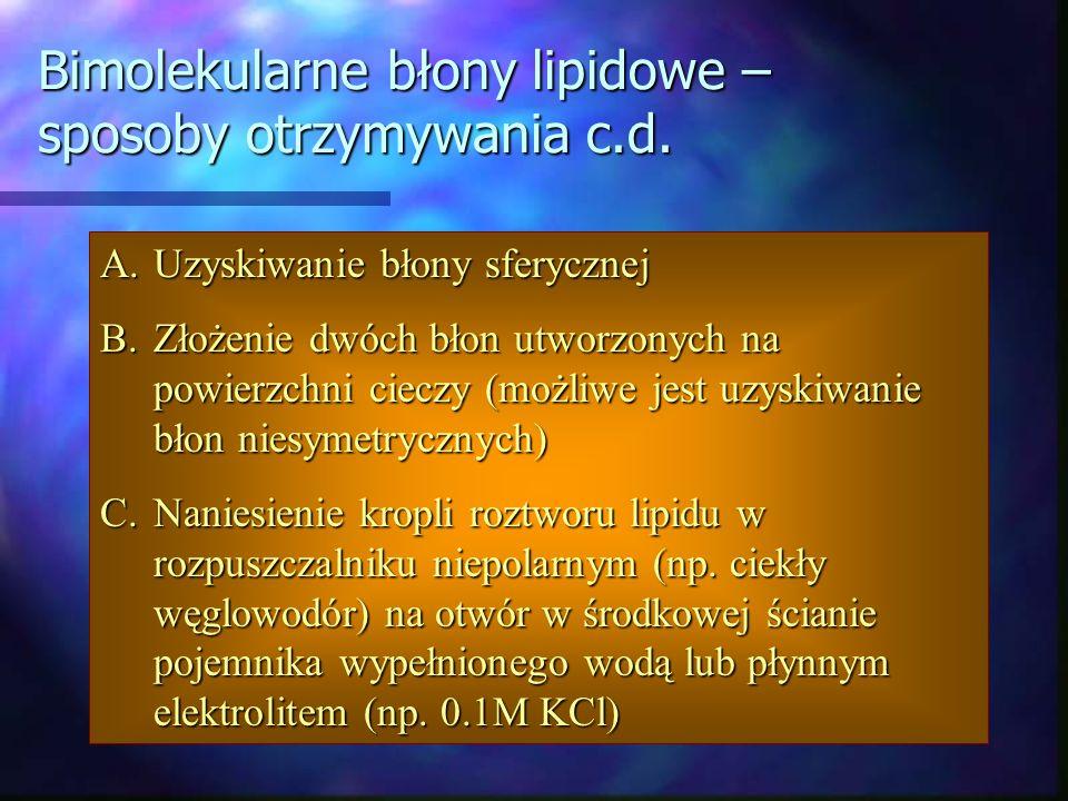 Bimolekularne błony lipidowe – sposoby otrzymywania c.d. A.Uzyskiwanie błony sferycznej B.Złożenie dwóch błon utworzonych na powierzchni cieczy (możli