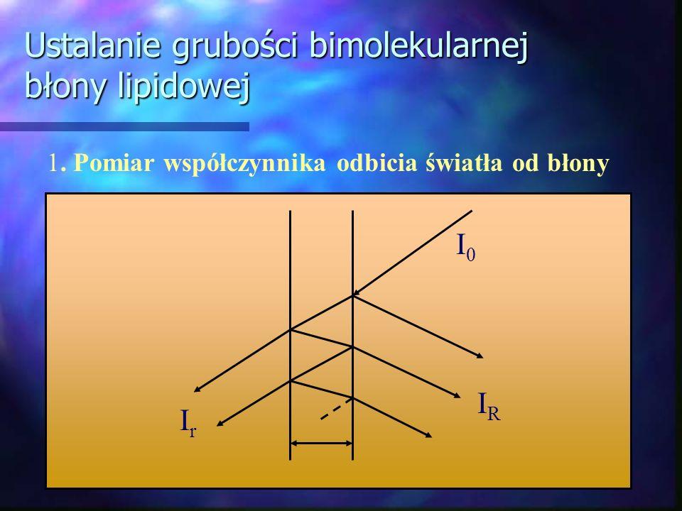 Ustalanie grubości bimolekularnej błony lipidowej 1. Pomiar współczynnika odbicia światła od błony IrIr IRIR I0I0
