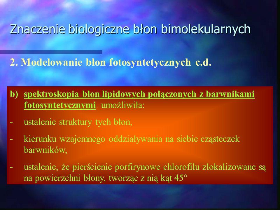 Znaczenie biologiczne błon bimolekularnych 2. Modelowanie błon fotosyntetycznych c.d. b)spektroskopia błon lipidowych połączonych z barwnikami fotosyn