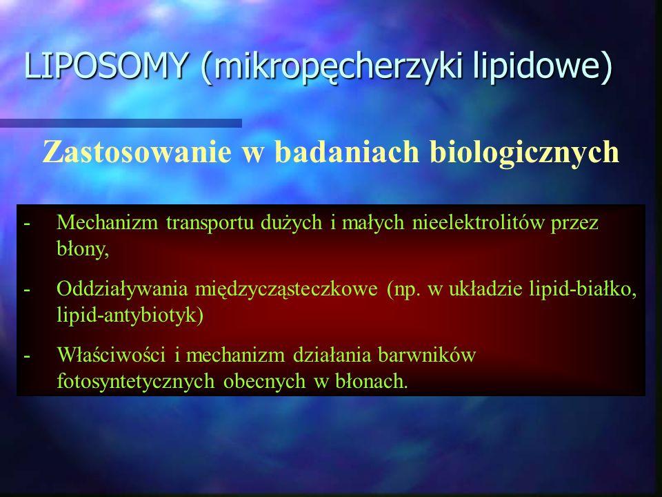 LIPOSOMY (mikropęcherzyki lipidowe) Zastosowanie w badaniach biologicznych -Mechanizm transportu dużych i małych nieelektrolitów przez błony, -Oddział