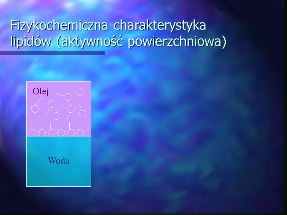 Fizykochemiczna charakterystyka lipidów (aktywność powierzchniowa) Woda Olej