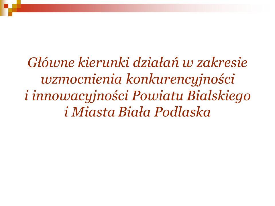 Główne kierunki działań w zakresie wzmocnienia konkurencyjności i innowacyjności Powiatu Bialskiego i Miasta Biała Podlaska