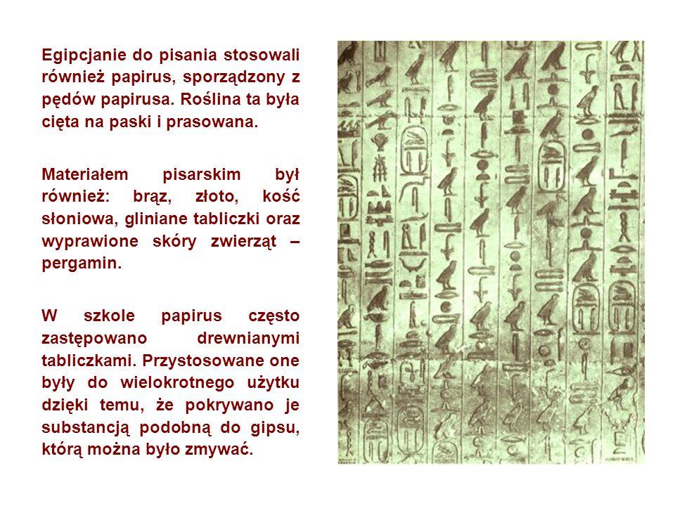 Egipcjanie do pisania stosowali również papirus, sporządzony z pędów papirusa. Roślina ta była cięta na paski i prasowana. Materiałem pisarskim był ró