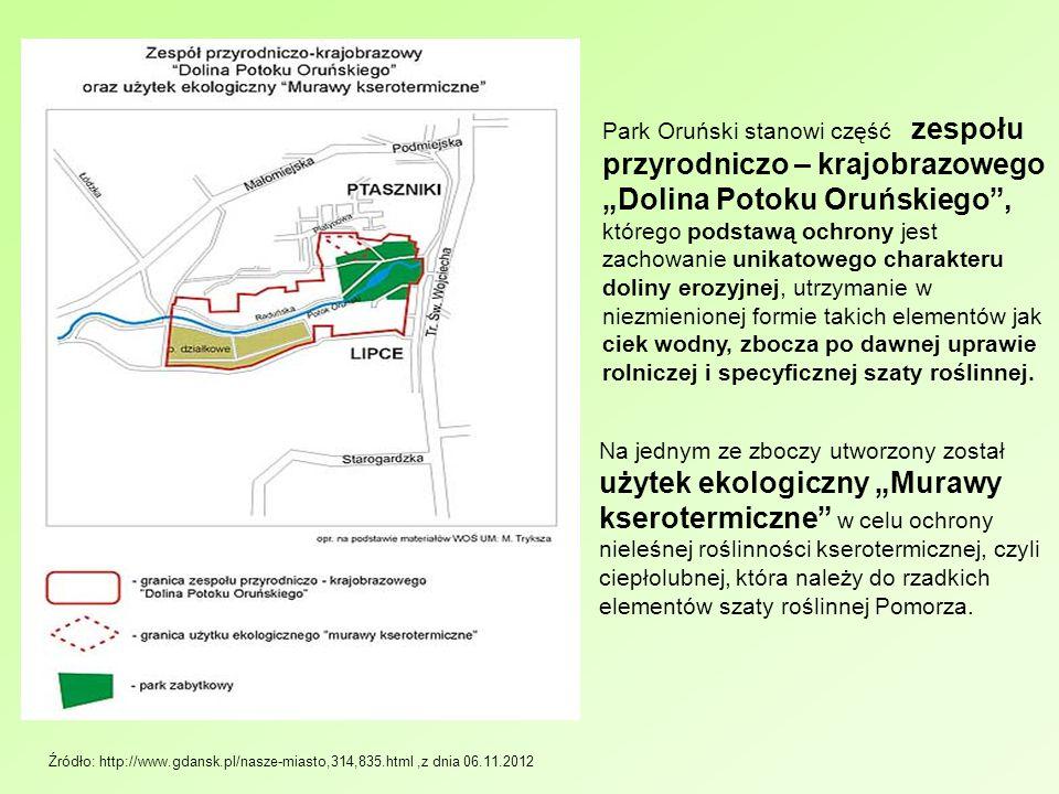 Źródło: http://www.gdansk.pl/nasze-miasto,314,835.html,z dnia 06.11.2012 Park Oruński stanowi część zespołu przyrodniczo – krajobrazowego Dolina Potok