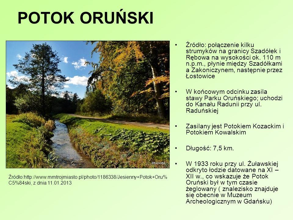 POTOK ORUŃSKI Źródło: połączenie kilku strumyków na granicy Szadółek i Rębowa na wysokości ok. 110 m n.p.m., płynie między Szadółkami a Zakoniczynem,