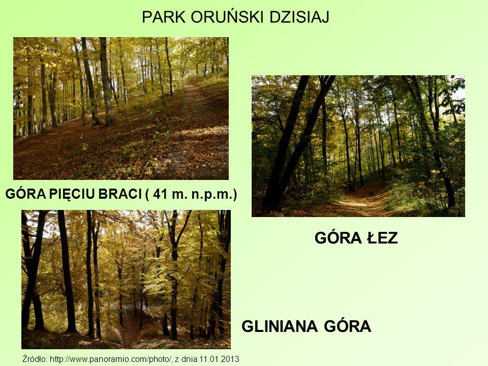 PARK ORUŃSKI DZISIAJ Źródło: http://www.panoramio.com/photo/, z dnia 11.01.2013 GÓRA PIĘCIU BRACI ( 41 m. n.p.m.) GÓRA ŁEZ GLINIANA GÓRA
