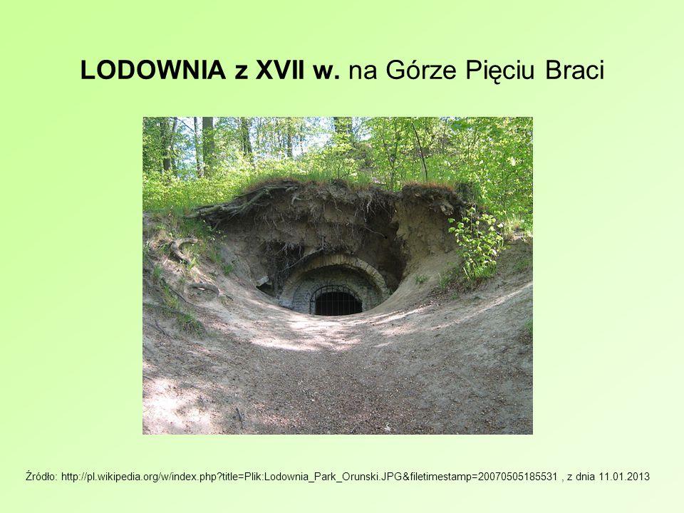 LODOWNIA z XVII w. na Górze Pięciu Braci Źródło: http://pl.wikipedia.org/w/index.php?title=Plik:Lodownia_Park_Orunski.JPG&filetimestamp=20070505185531