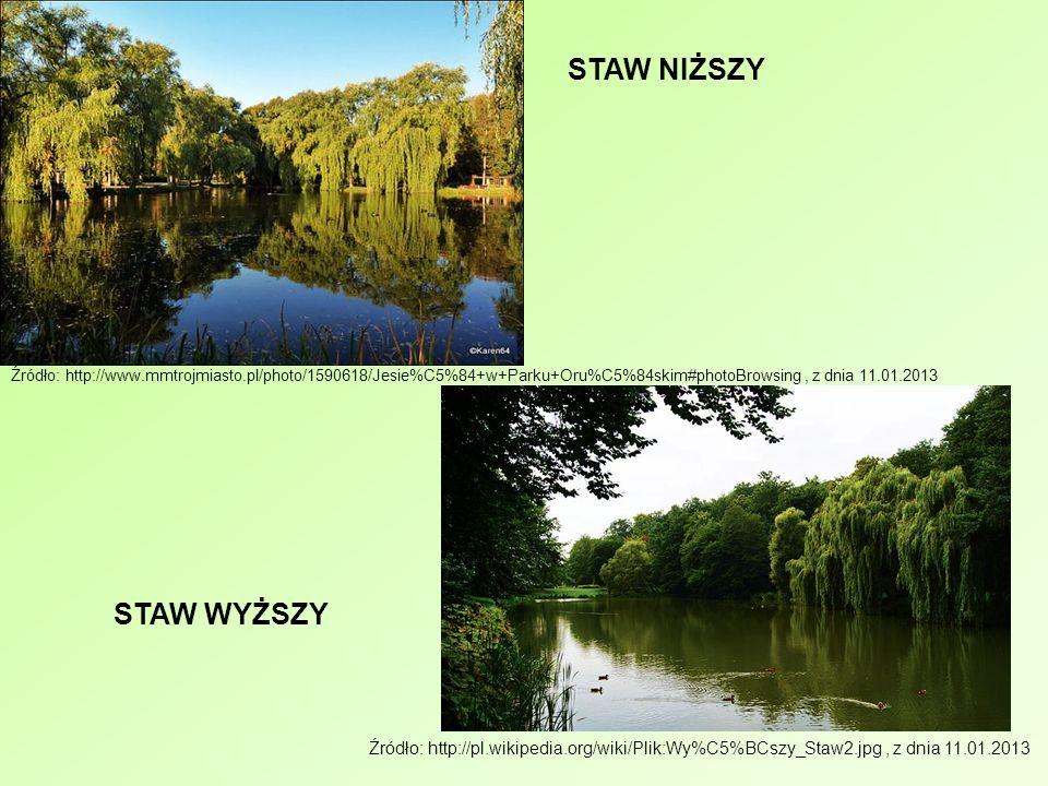 Źródło: http://www.mmtrojmiasto.pl/photo/1590618/Jesie%C5%84+w+Parku+Oru%C5%84skim#photoBrowsing, z dnia 11.01.2013 STAW NIŻSZY Źródło: http://pl.wiki