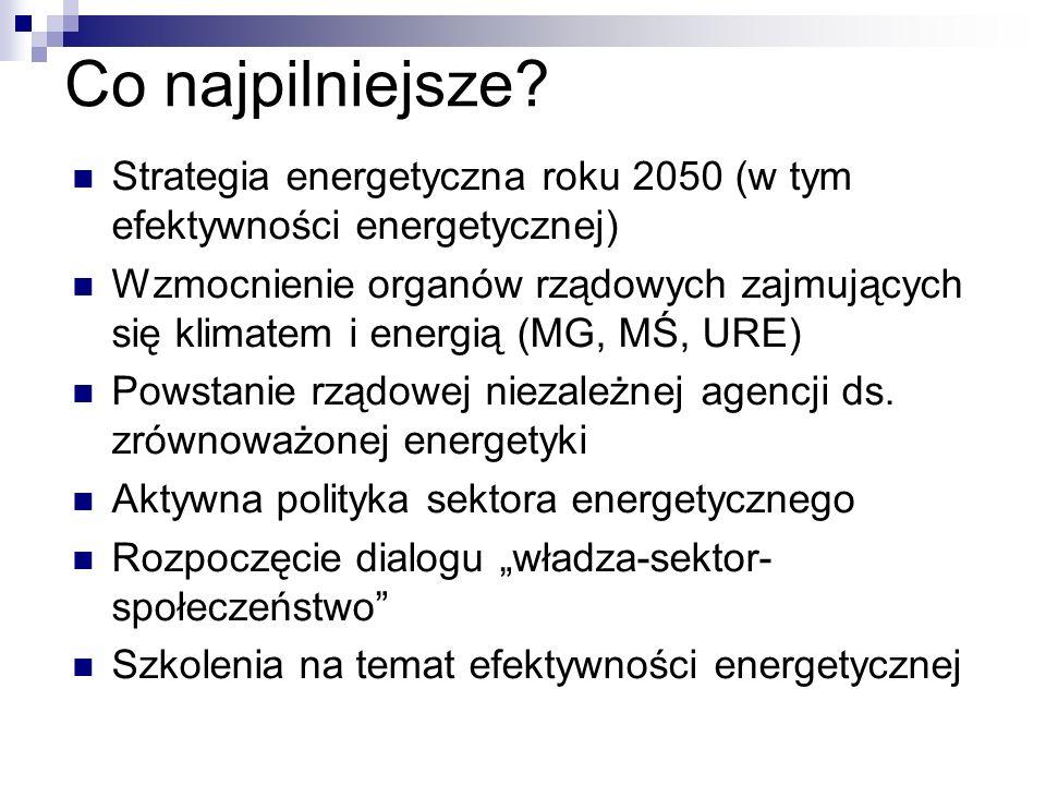 Co najpilniejsze? Strategia energetyczna roku 2050 (w tym efektywności energetycznej) Wzmocnienie organów rządowych zajmujących się klimatem i energią