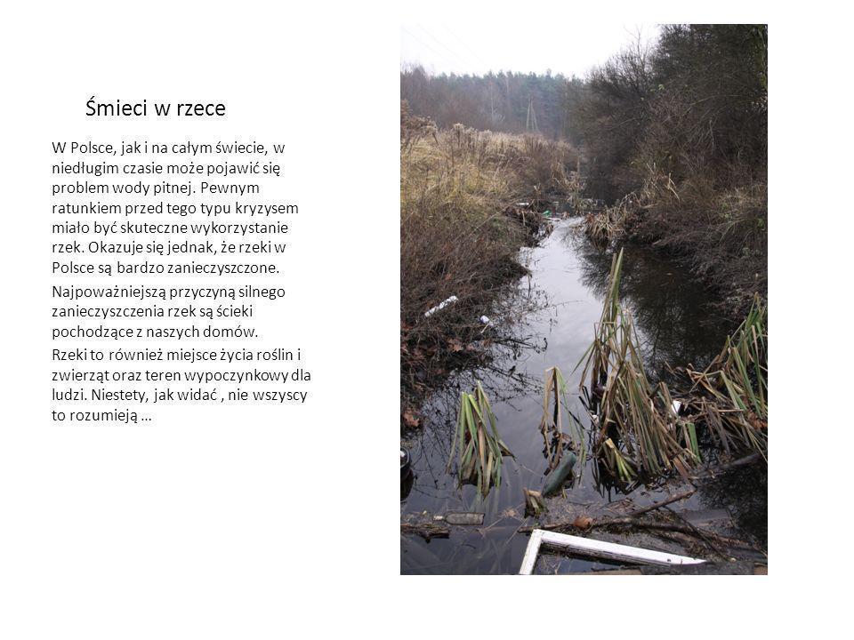 Śmieci w rzece W Polsce, jak i na całym świecie, w niedługim czasie może pojawić się problem wody pitnej. Pewnym ratunkiem przed tego typu kryzysem mi