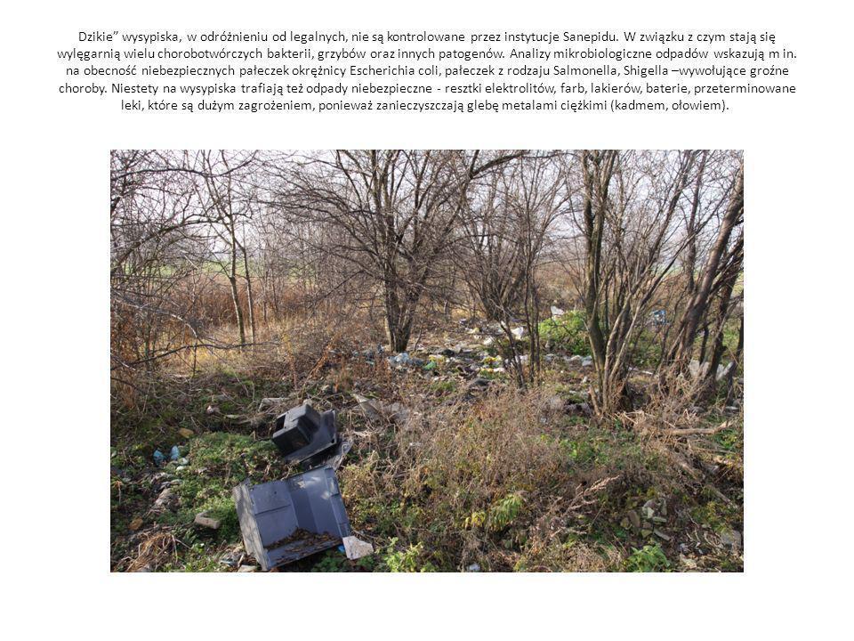 Dzikie wysypiska, w odróżnieniu od legalnych, nie są kontrolowane przez instytucje Sanepidu. W związku z czym stają się wylęgarnią wielu chorobotwórcz
