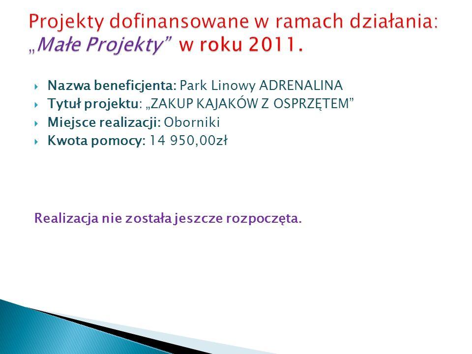 Nazwa beneficjenta: Park Linowy ADRENALINA Tytuł projektu: ZAKUP KAJAKÓW Z OSPRZĘTEM Miejsce realizacji: Oborniki Kwota pomocy: 14 950,00zł Realizacja