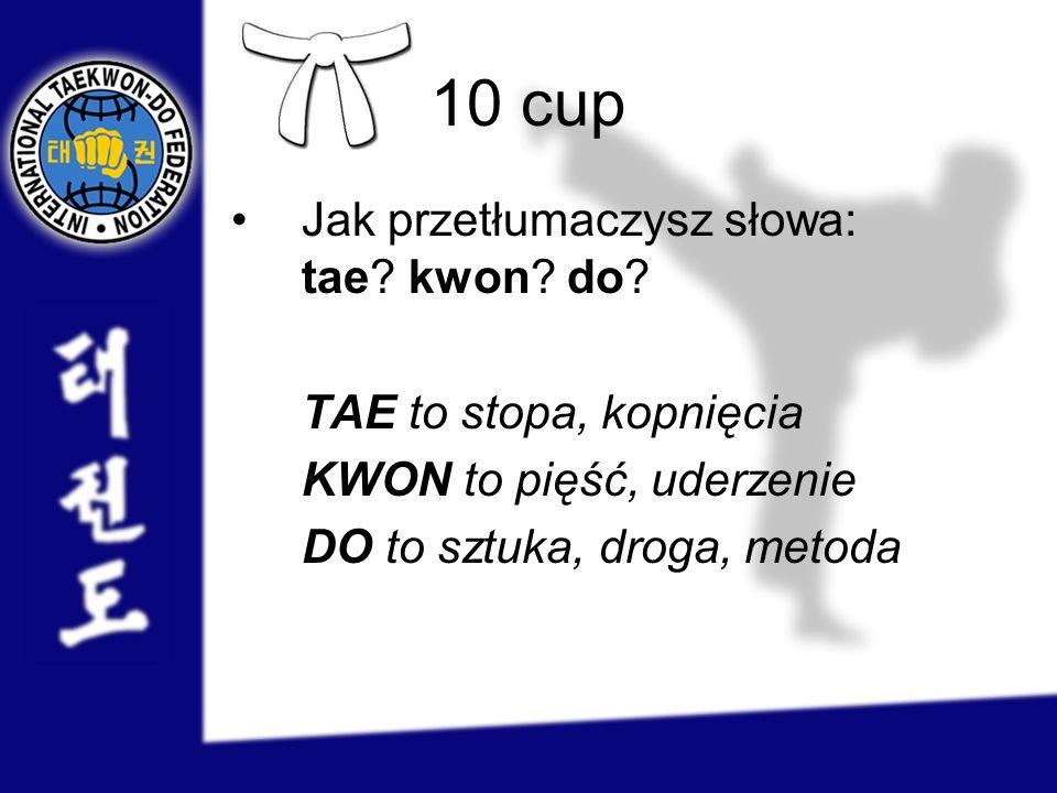4 cup Co symbolizują poszczególne kolory pasów w taekwon-do.