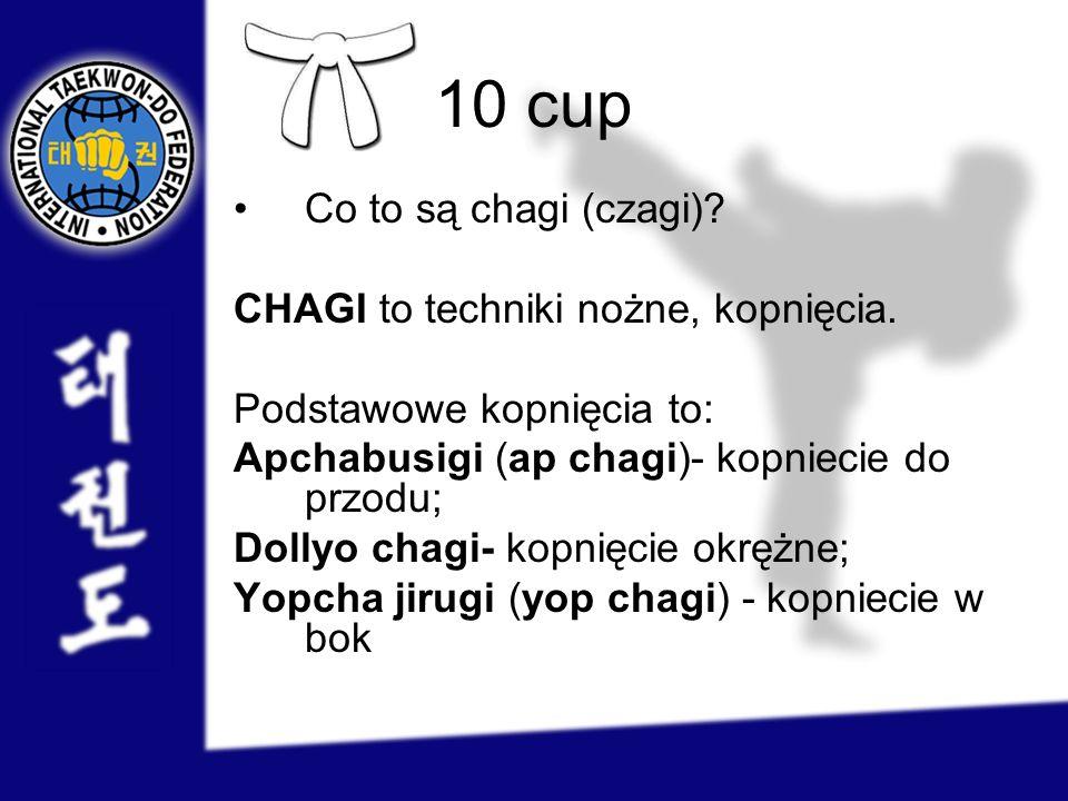 9 cup Co to jest chon-ji tul.
