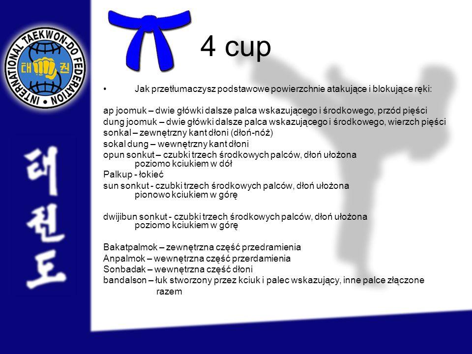4 cup Jak przetłumaczysz podstawowe powierzchnie atakujące i blokujące ręki: ap joomuk – dwie główki dalsze palca wskazującego i środkowego, przód pię