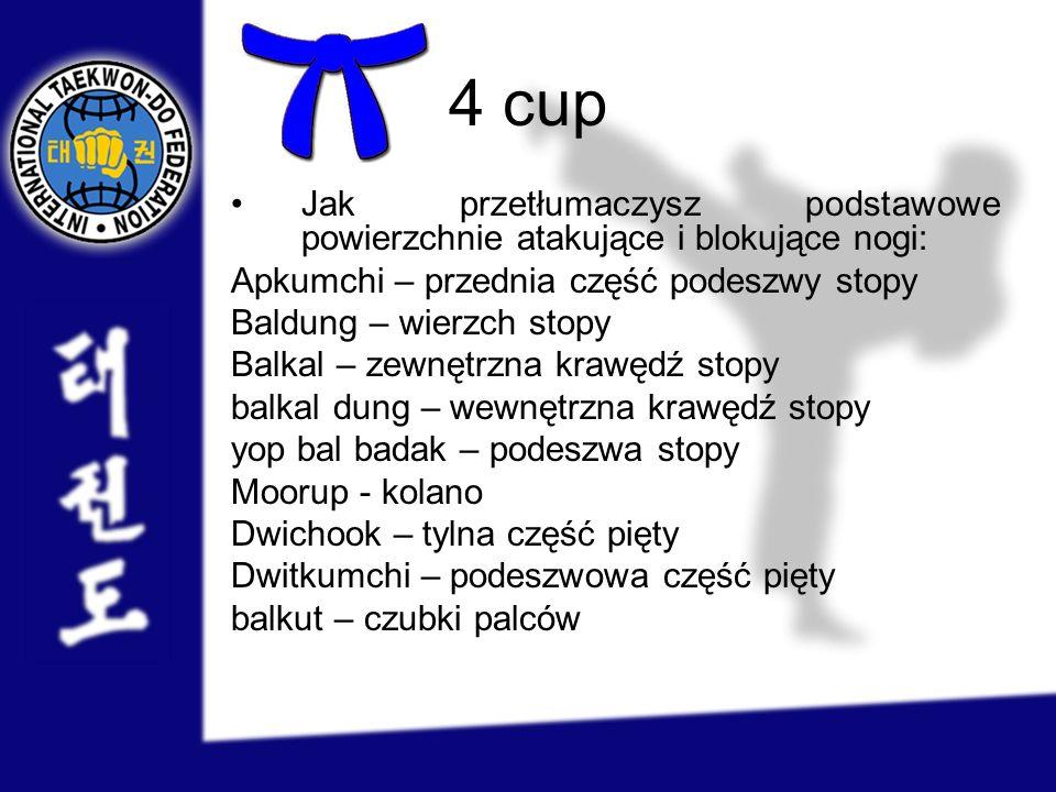4 cup Jak przetłumaczysz podstawowe powierzchnie atakujące i blokujące nogi: Apkumchi – przednia część podeszwy stopy Baldung – wierzch stopy Balkal –