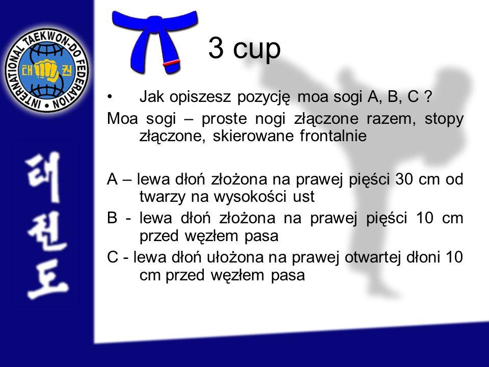 3 cup Jak opiszesz pozycję moa sogi A, B, C ? Moa sogi – proste nogi złączone razem, stopy złączone, skierowane frontalnie A – lewa dłoń złożona na pr