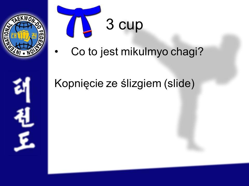 3 cup Co to jest mikulmyo chagi? Kopnięcie ze ślizgiem (slide)