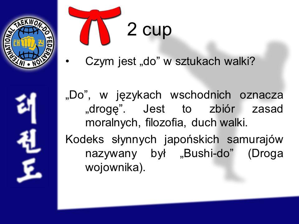 2 cup Czym jest do w sztukach walki? Do, w językach wschodnich oznacza drogę. Jest to zbiór zasad moralnych, filozofia, duch walki. Kodeks słynnych ja