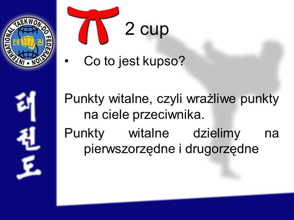 2 cup Co to jest kupso? Punkty witalne, czyli wrażliwe punkty na ciele przeciwnika. Punkty witalne dzielimy na pierwszorzędne i drugorzędne