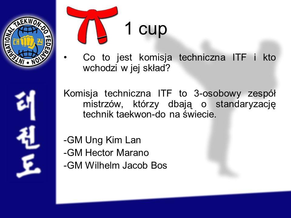 1 cup Co to jest komisja techniczna ITF i kto wchodzi w jej skład? Komisja techniczna ITF to 3-osobowy zespół mistrzów, którzy dbają o standaryzację t