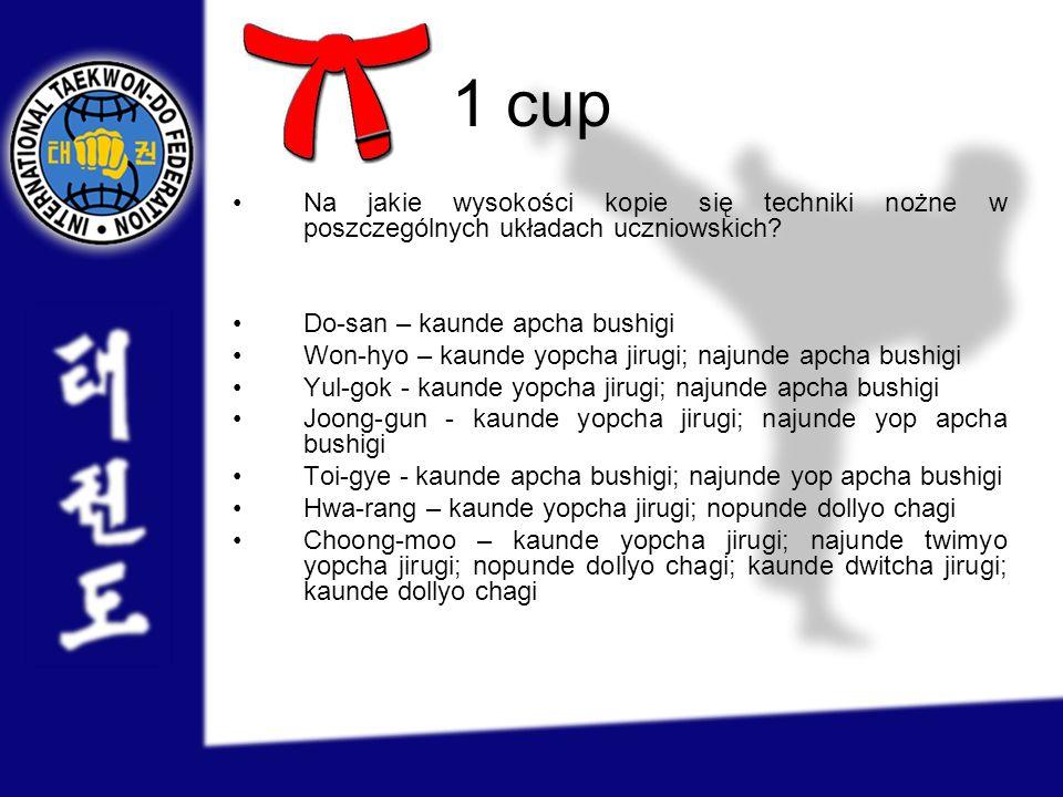 1 cup Na jakie wysokości kopie się techniki nożne w poszczególnych układach uczniowskich? Do-san – kaunde apcha bushigi Won-hyo – kaunde yopcha jirugi