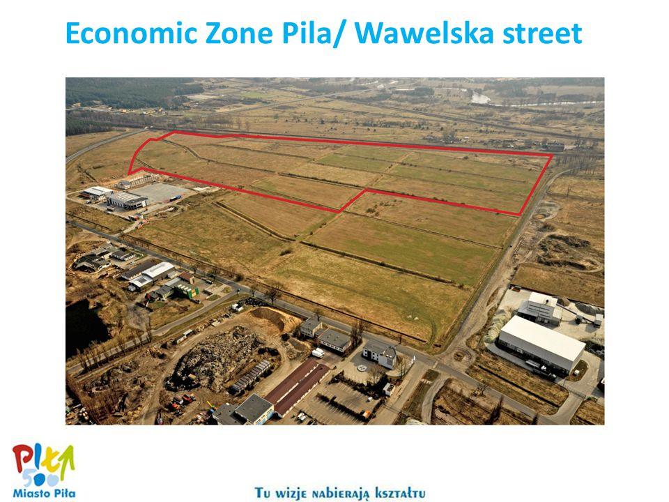 Economic Zone Pila/ Wawelska street