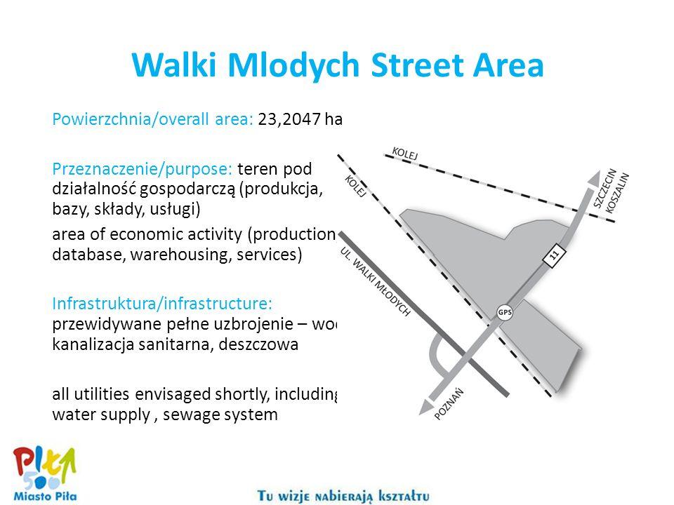Powierzchnia/overall area: 23,2047 ha Przeznaczenie/purpose: teren pod działalność gospodarczą (produkcja, bazy, składy, usługi) area of economic acti