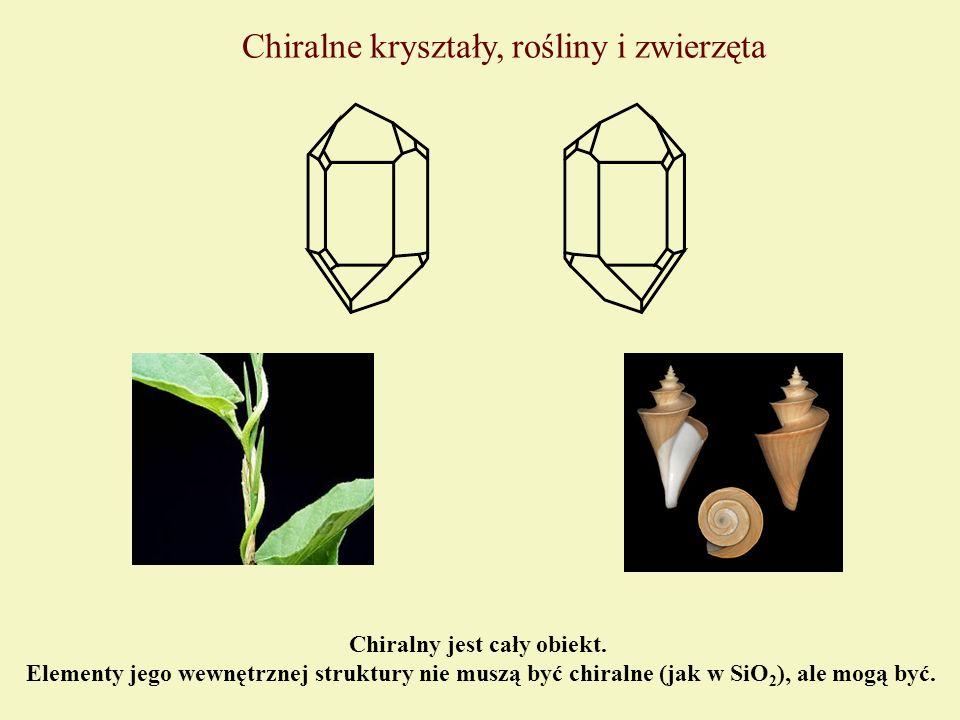 Chiralne kryształy, rośliny i zwierzęta Chiralny jest cały obiekt. Elementy jego wewnętrznej struktury nie muszą być chiralne (jak w SiO 2 ), ale mogą