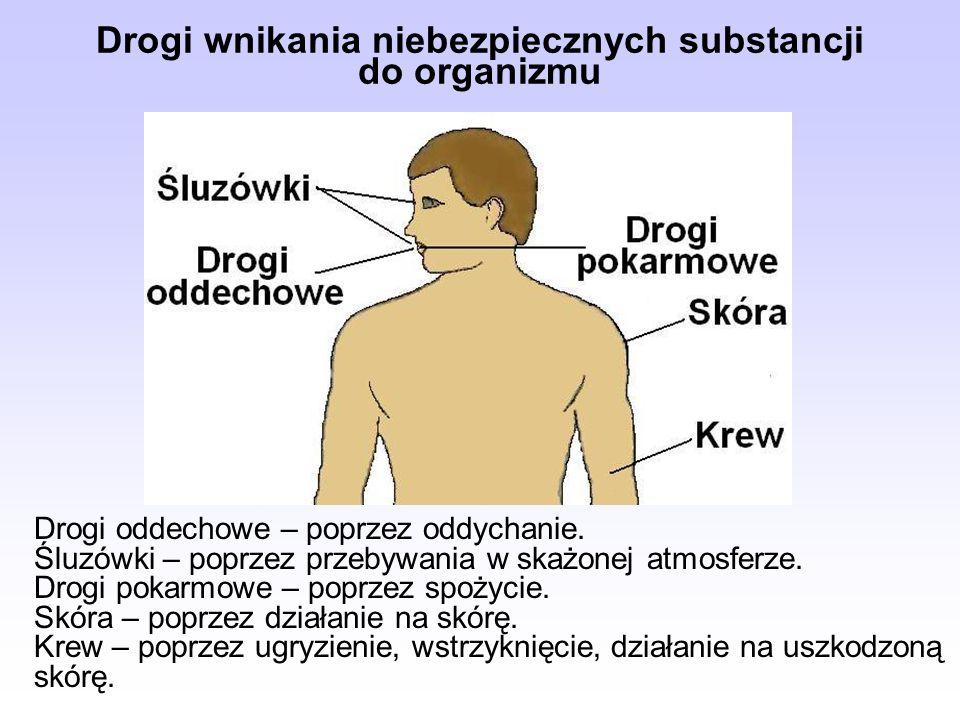 Drogi wnikania niebezpiecznych substancji do organizmu Drogi oddechowe – poprzez oddychanie. Śluzówki – poprzez przebywania w skażonej atmosferze. Dro